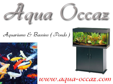 Aqua Occaz